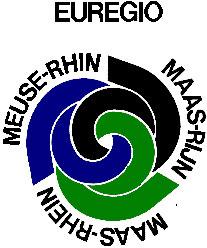 LogoEMR3